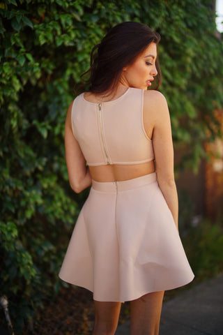 Aja Mesh Skater Dress - Blush