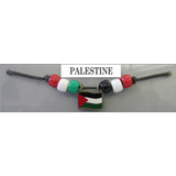 Palestine Fan Choker Necklace
