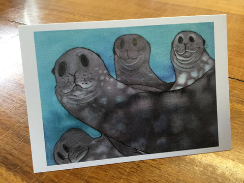 Seals under the ice card
