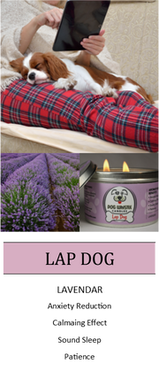 Lap Dog - Anxiety Reduction * Sound Sleep * Patience Aromatherapy Candle