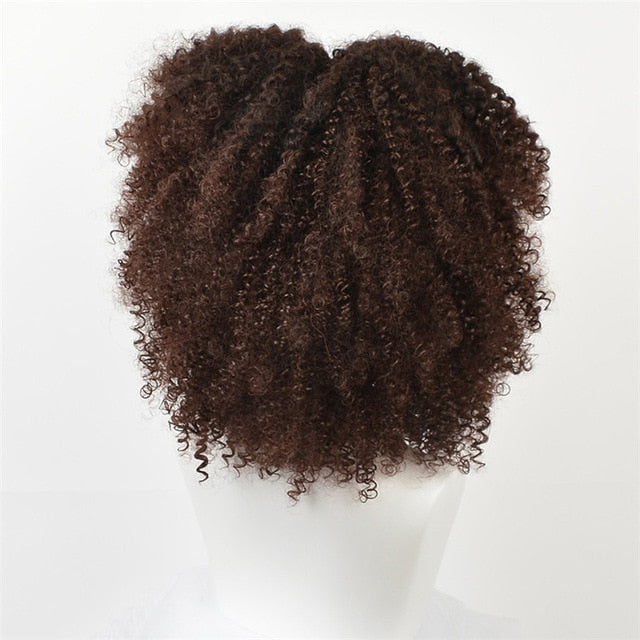 Brown Synthetic Curly Wigs for Women