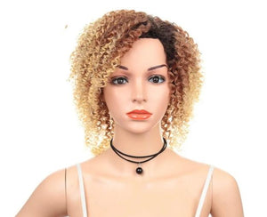 "12"" Afro Kinky Curly Synthetic Heat Resistant Fiber Wigs"