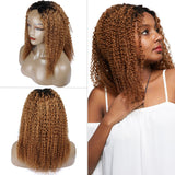 Ombre Blonde Afro Kinky Curly Human Hair Wigs
