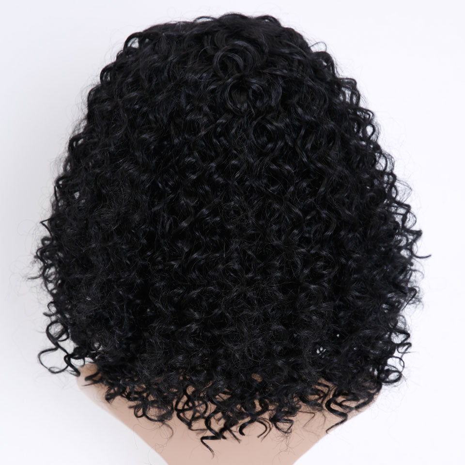 HAIR Afro Kinky Wig Curly Synthetic Wigs For  Women