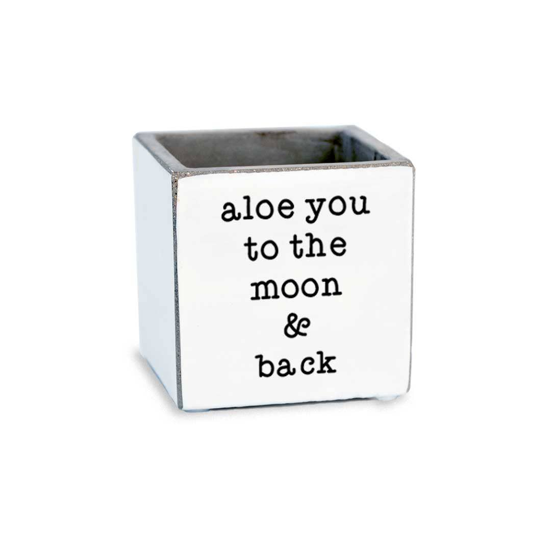 Aloe You To The Moon & Back Succulent Pot