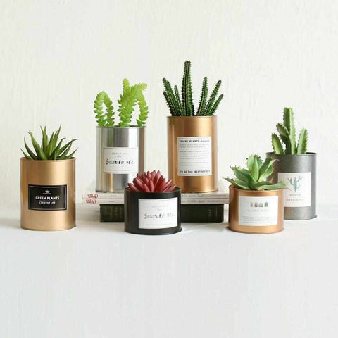 Image of Metal Can Cylinder | DIY Plant Holder / Desk Organizer - ECOcharming.com