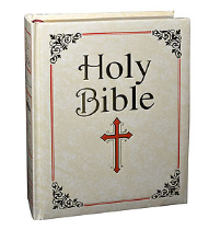 FAMILY EDITION NEW AMERICAN BIBLE