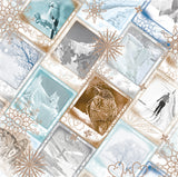 Bo Bunny Papers - Whiteout - Arctic Rim - 2 Sheets