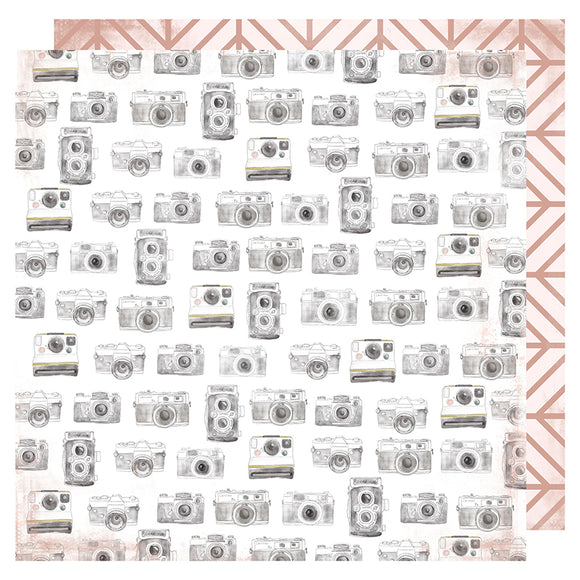 Heidi Swapp Papers - Honey & Spice - Captured - 2 Sheets