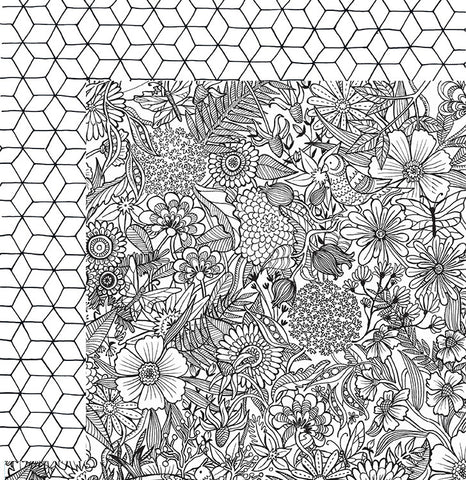 American Crafts Papers - Adult Coloring Pages - Floral - 2 Sheets