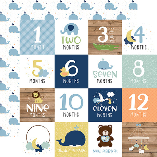 Echo Park Cut-Outs - Baby Boy - Milestone Cards