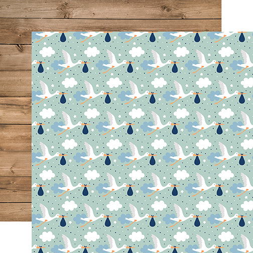 Echo Park Papers - Baby Boy - Welcome Baby Boy - 2 Sheets