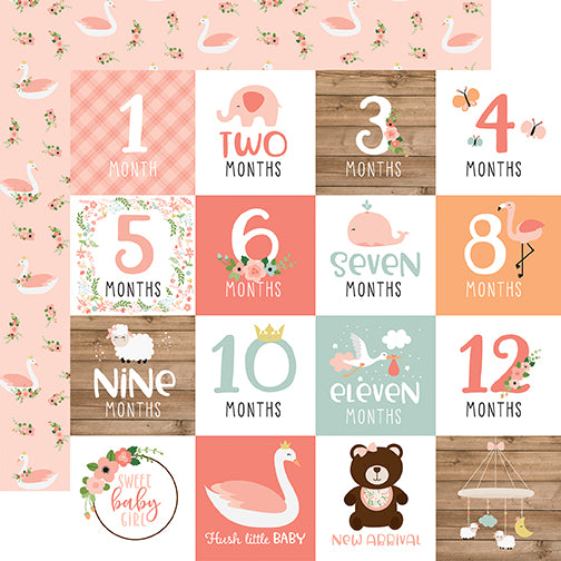 Echo Park Cut-Outs - Baby Girl - Milestone Cards
