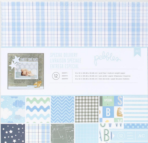 Pebbles Collection Kit - Special Delivery - Baby Boy