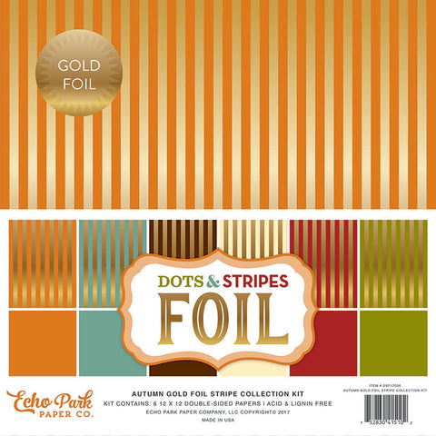 Echo Park Collection Kit - Dots & Stripes Designer Cardstock - Autumn Gold Foil