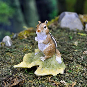 Squirrel on Leaf