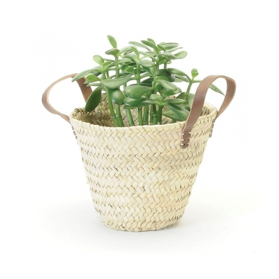 Straw Planter w, Leather Handles