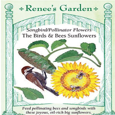 SUNFLOWER BIRDS AND BEES