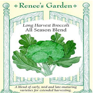 BROCCOLI ALL SEASON BLEND