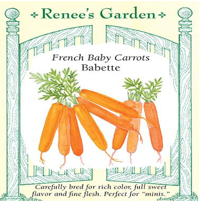 CARROT BABY BABETTE FRENCH