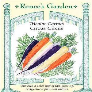 CARROT CIRCUS CIRCUS TRI-COLOR