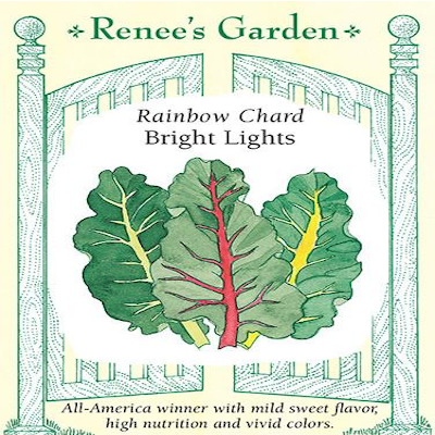 CHARD RAINBOW BRIGHT LIGHTS