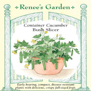 CUCUMBER CONTAINER BUSH SLICER