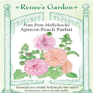 HOLLYHOCK APRICOT-PEACH PARFAIT