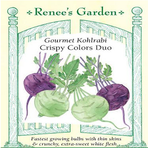 KOHLRABI CRISPY COLORS DUO