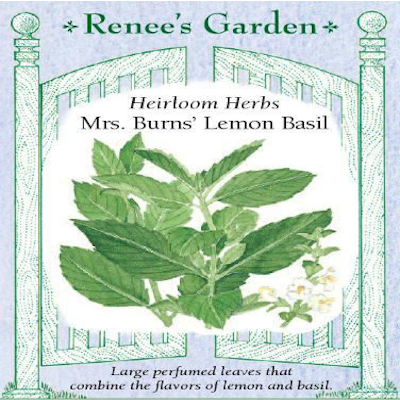 BASIL MRS. BURNS' LEMON