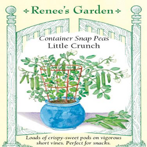 PEA SNAP CONTAINER LITTLE CRUNCH