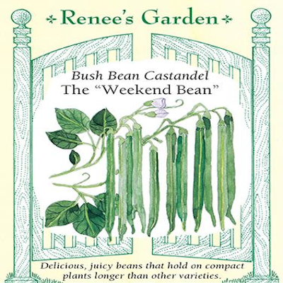 BEAN BUSH CASTANDEL WEEKEND