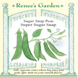 PEA SNAP SUPER SUGAR SNAPS