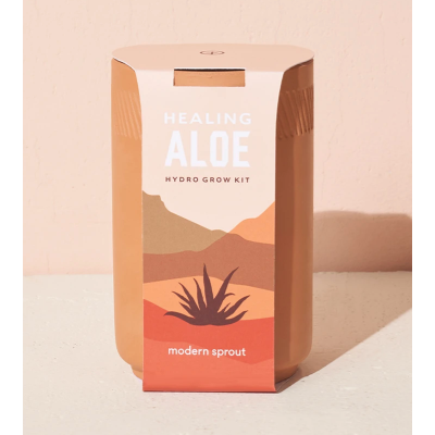 Terracotta kit - aloe