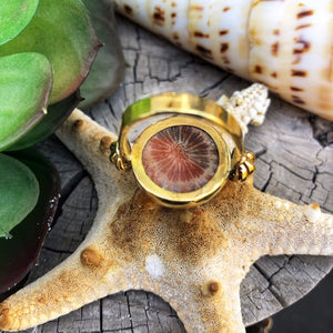 Fossil Coral Gold Ring