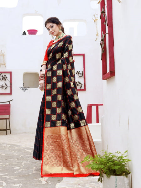Beautiful Silk Saree(Black)