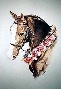 Commissioned Portrait 17x22 color pencil painting. This portrait was a commissioned piece for one of the Ontario Arab Clubs' retiring executives. This was his favorite mare that had long since passed away. I heard he was emotionally overcome when the piece was presented to him at the farewell dinner.