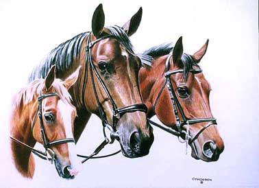 This portrait was a commissioned piece of Lynn's mares. The larger mare in the center is the mother of the other two.