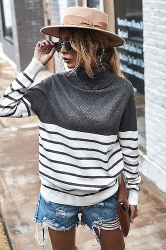 Britton Stripe Turtleneck Sweater