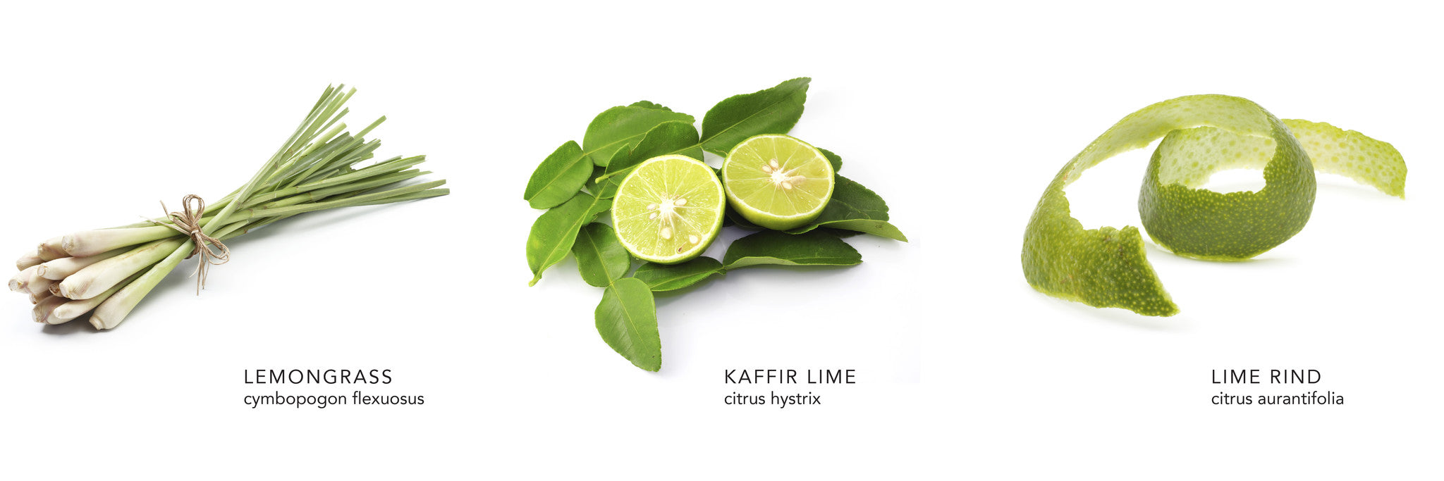 Kaffir Lime Leaves Where To Buy Whole Foods