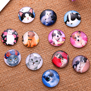 20mm Round Glass Cabochon Mixed Pet Pictures Style Dome Jewelry Finding Cameo Pendant Setting