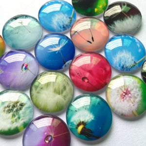 12mm 20mm Round Glass Cabochon Dandelion Pictures Mixed Pattern Fit Cameo Base Setting for Jewelry