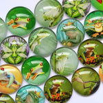 10mm 12mm 18mm 20mm 25mm 30mm Green Frog Round Photo Glass Cabochon Mixed Pattern Fit Cameo Base Setting