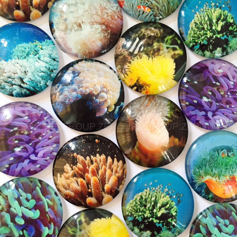 18mm 20mm 25mm Round Glass Cabochon Anemones Pictures Mixed Pattern Fit Cameo Base Setting
