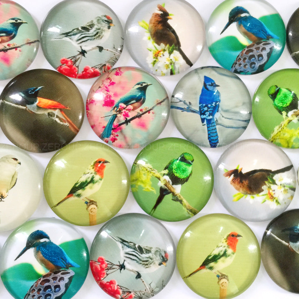 18mm 20mm 25mm Birds Mixed Pattern Round Glass Cabochon Fit Cameo Base Setting
