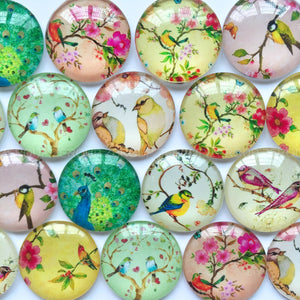 18mm 20mm 25mm Birds Round Glass Cabochon Mixed Pattern Fit Cameo Base Setting
