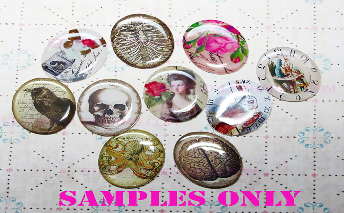 25mm 1 inch Bottle Cap Resin Cameo Cabochon. Anatomy 2