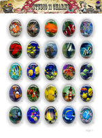 25pcs 40x30, 18x25, 25mm Resin Cameo LOW DOME Cabochon. Fish 1 Aquarium