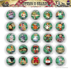 25pcs 25mm 1 inch Bottle Cap Resin Cameo Cabochon. Alice in Wonderland 42e