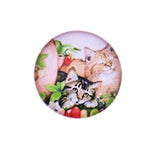 12mm 14mm 16mm Round Glass Cabochon Mixed Lovely Cat Designs Round Handmade Photo Dome Cover DIY Ornament Settings